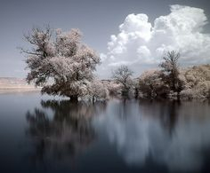 Infrared Waterscape by Sakis Dazanis