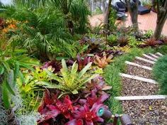 Tropical Garden Ideas Nz image result for nz native garden design ideas | quay garden
