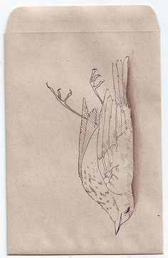 Dead Bird [2] by Eating ghosts, via Flickr
