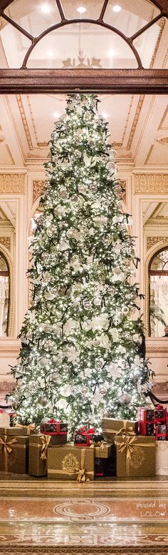 Christmas Tree at the Plaza Hotel NYC |