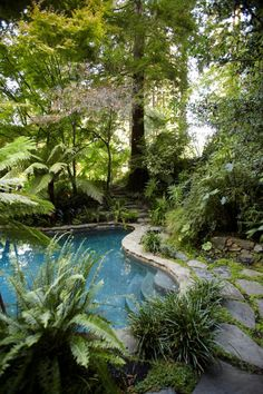 Rescuing a 100-Year-Old Garden: The stream was routed to lead to a fish pond and lined the path with ferns and plants with tropical foliage to enhance the property's natural feeling of being in a jungle.