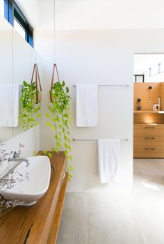 House Tour: A Crisp, Modern Home In Australia. Green ApartmentBathroom  Design ...