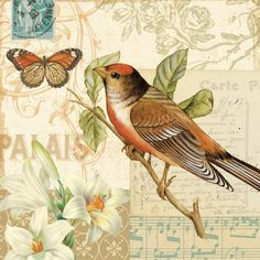 Image result for decoupage bird printables free