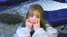 Kim Jennie, Korean Girl Fashion, Blackpink Fashion, Fashion Trends, South Korean Girls, Korean Girl Groups, Twice Chaeyoung, Blackpink Memes, Black Pink Kpop
