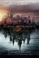 City of Bones ($4.99 Kindle), the first novel in The Mortal Instruments series by Cassandra Clare [Simon and Schuster]. The movie adaptation is opening soon, so you'll need to start reading now to finish the book first.  What you won't want to miss, though, is the current sale on the rest of the novels in the series, all marked down to $4.99 (with list prices from $12.99 to $21.99!)