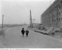 Nieuwbouw, Amsterdam-West (1950-1958)