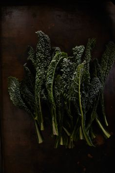 kale // hungry ghost food + travel