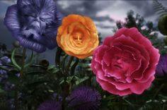 Luxus Schmuck Sammlung, von Alice im Wunderland inspiriert - Rosen
