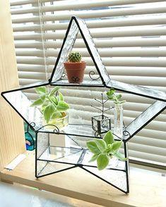 棚、テラリウム、 星の飾り棚 呼び名はあなたの自由です。 #ステンドグラス #ステンドグラス雑貨 #インテリア雑貨 #ガラスの飾り棚 #星の飾り棚 #テラリウム #棚 #星 #クリアガラス #ステンドグラスMA-RU-