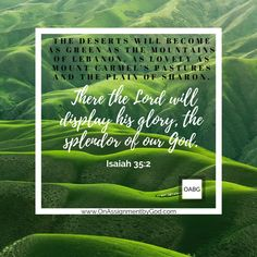 They will see the glory of the Lord, the splendor of our God. Isaiah 35:2 Start The Day, Verse Of The Day, Letter Board, How To Become, Lord