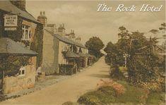 A Dartmoor Tonic