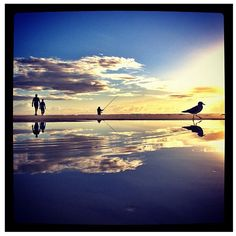 CONGRATULATIONS Here are the winner from yesterday Jun 02, 2012 in PHOTO OF THE DAY BLIPOINT. @biggestkahuna