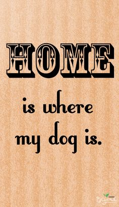 To me, a house is not a home without the love of a four legged companion. #thinkbeyond #commissioned #cutedogquote