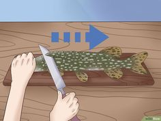 How to Clean and Fillet a Northern Pike. The pike is an excellent eating fish, but it is so bony that it scares off many fishermen. By removing the Y-bones you make a good meal even better. The technique for getting the Y-bones out of. Fish Patties, Off The Bone, Fillet Knife, Pike Fishing, Blog, Cleaning, Pictures, Camping, Bones