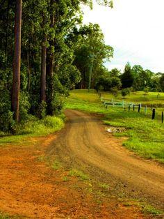 38300_Country-Path_400.jpg (375×500)