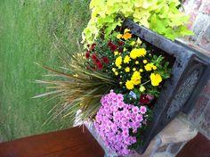 Colorful fall planter.