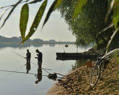 Entre Gennes et le Thoureil, des petits coins de pêche attendent les plus passionnés d'entre vous, en Anjou...