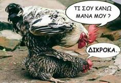 Funny Greek Quotes, Just For Laughs, Funny Pictures, Funny Pics, Funny Jokes, Haha, Memes, Animals, Emoticon