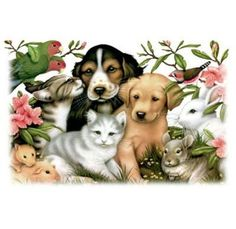 Petfinder has helped more than 25 million pets find their families through adoption. Search our extensive list of dogs, cats and other pets available for adoption and rescue near you. Animal Espiritual, Spiritual Animal, Pet Day, Kittens And Puppies, Animation, Pet Loss, Jolie Photo, Animal Quotes, Dog Art