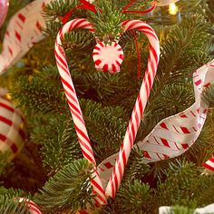Hot glue two candy canes to form heart shape and glue peppermint to top.  Tie on tree with red ribbon