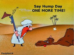 hump+day.jpg (1280×954)