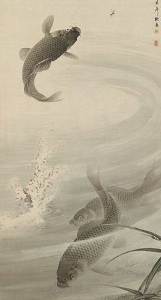 Carp. Main detail of a hanging scroll; ink and color on silk, late 19th century, Japan, by artist IMAO Keinen