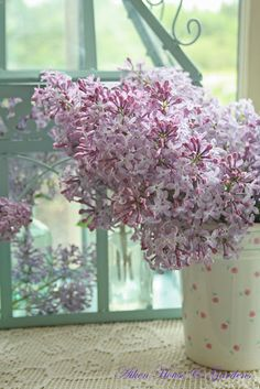 lilacs scented my childhood, I love there scent and think they are beautiful.