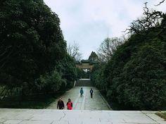 🇨🇳南京📍  灵谷景区🌲 Linggu Temple🌲🌲 #nanjing#china#travel#instatravel#travelgram#jt#nature#南京#中国#旅游 🎏 by jtlost. jt #旅游 #nanjing #travelgram #南京 #instatravel #travel #china #中国 #nature #micefx [Follow us on Twitter (@MICEFXSolutions) for more...]