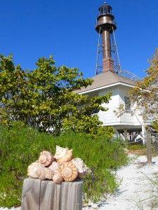 Shelling on Sanibel Island, Florida, USA - www.sanibel-captiva.org