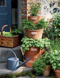 DIY fairy garden from broken pots Broken Pot Garden, Garden Pots, Herb Garden, Fairy Pots, Pot Jardin, Garden Types, Fairy Houses, Clay Pots, Garden Inspiration