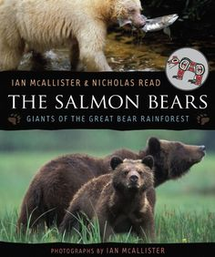 """Read """"The Salmon Bears Giants of the Great Bear Rainforest"""" by Ian McAllister available from Rakuten Kobo. Extensively illustrated with Ian McAllister's magnificent photographs, The Salmon Bears explores the delicate balance th. Black Bear, Brown Bear, Spirit Bear, Read Image, Mother Bears, Rainforest Animals, Order Book, Fiction And Nonfiction, Children's Literature"""