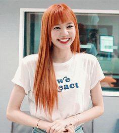 ♡Blackpink in your Area♡ - Lisa Kim Jennie, South Korean Girls, Korean Girl Groups, Rapper, Wattpad, Kim Jisoo, Blackpink And Bts, Jack Nicholson, Blackpink Lisa