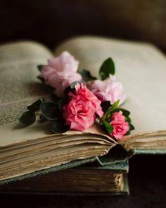 floral nursery art, flower and book art, pink flower art, be… – Wallpaper Ideas Floral Nursery, Nursery Art, Romantic Flowers, Beautiful Flowers, Shabby Flowers, Book Flowers, Book Aesthetic, Jolie Photo, Old Books