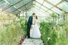 For all the brides planning their summer weddings, here is Philip & Annemé's Rosemary Hill Wedding shoot Greenhouse Wedding, Diy Greenhouse, Wedding Shoot, Wedding Dresses, Summer Wedding, Wedding Inspiration, Bride, Photography, Fans