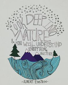 Einstein Nature : Art Print 8x10 - Illustration Mountain Ocean Forest Wilderness Adventure Wanderlust Explore Quote Typography Science