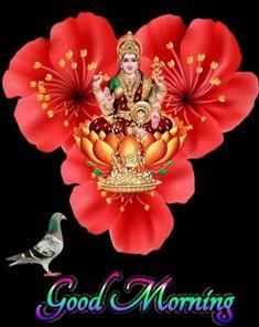 Beautiful Love Pictures, Beautiful Flowers, Jay Mataji, Durga Images, Friday Morning, Hare Krishna, Hanuman, Good Morning Quotes, Night
