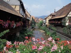 Alsace France... in the mountains, Swiss and German architecture, wine, good food, breathtaking views