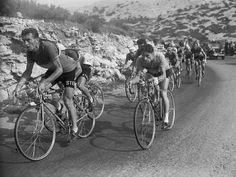 Tour de France 1953. 17^Tappa, 21 luglio. Monaco > Gap. Louison Bobet (1925-1983), Giancarlo Astrua (1927-2010), seminascosto, e Jean Malléjac (1929-2001) si sfidano in testa al gruppo. Alle loro spalle, nel gruppo, l'inconfondibile sagoma di Gino Bartali (1914-2000)