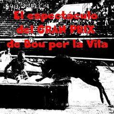 torodigital: El espectáculo del GRAN PRIX de Bou per la Vila