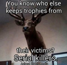 Hunting for meat and using the fur and the meat is manly. Hunting for sport just to put a trophy on a wall is just plain childish, cruel, and ignorant. Vegan Quotes, Vegan Memes, Trophy Hunting, Why Vegan, Stop Animal Cruelty, Animal Testing, Vegan Animals, Animal Welfare, Serial Killers