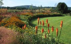 Late Summer Colour in garden blending and harmonizing with the view and surroundings