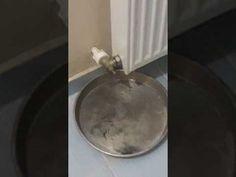 Evde Petek Temizliği Nasıl Yapılır - YouTube