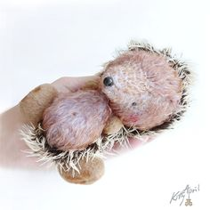 Hedgehog Miniature Forest Friend  5 inch  by KittyAprilHandmade, $60.00
