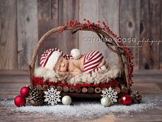 Newborn in Twig Bed - Christmas Photo Session - Christmas Newborn Session - Christmas Photos - Christmas Newborn - Holiday Portraits - Newborn Photography - Newborn Photographer - Holiday Newborn Session - Christmas Card Photos. Newborn Christmas Pictures, Xmas Photos, Newborn Pictures, Newborn Pics, Baby Christmas Photoshoot, Infant Pictures, Pet Photos, Christmas Christmas, Newborn Christmas Outfit Boy