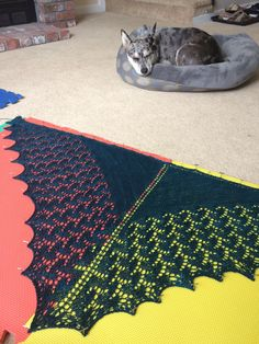 Blocking my wedding shawl with help from a cattle dog #knitting