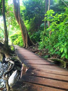 Krabi, Thailand / Aonang Beach / Monkey Trail - secret path that takes you across two beaches and over a mountain.