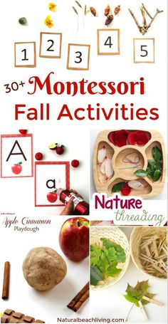 30+ Amazing Montessori Fall Activities for Preschool and Kindergarten - Natural Beach Living