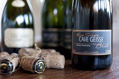 Cave Geisse, Pinto Bandeira, vinícola, vinhedos, vinhos, espumantes, natureza, serra, verde, uvas, produção, luxo, bom gosto, entretenimento