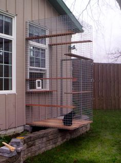 cat window: Cat Enclosures Catios Diy, Outdoor Cat Enclosure, Catios Gatos, Cat Houses, Cat S Enclosures