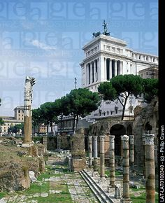 Rome, Italy - Roman Forum. Buildings on archaeological site. Columns,pillars. Paving.